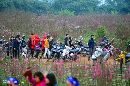 Đổ xô lên làng hoa nổi tiếng đất Hà thành gây tắc nghẽn - 6