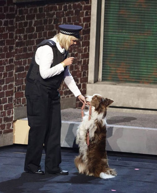 Chú chó và chủ nhân đăng quang Britain's Got Talent 2015 - 1