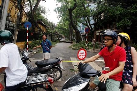 Hà Nội cấm đường, đóng cửa công viên sau trận cuồng phong
