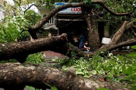 Hà Nội cấm đường, đóng cửa công viên sau trận cuồng phong - 4