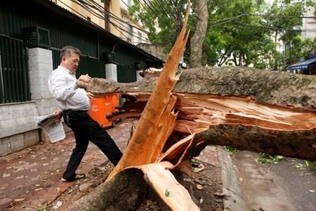 Hà Nội cấm đường, đóng cửa công viên sau trận cuồng phong - 6