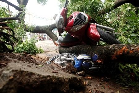 Hà Nội cấm đường, đóng cửa công viên sau trận cuồng phong - 8