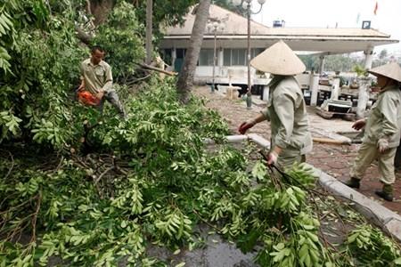 Hà Nội cấm đường, đóng cửa công viên sau trận cuồng phong - 11