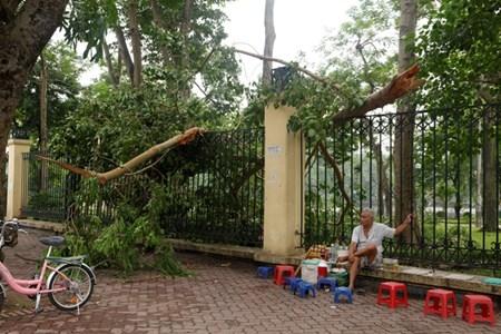 Hà Nội cấm đường, đóng cửa công viên sau trận cuồng phong - 14