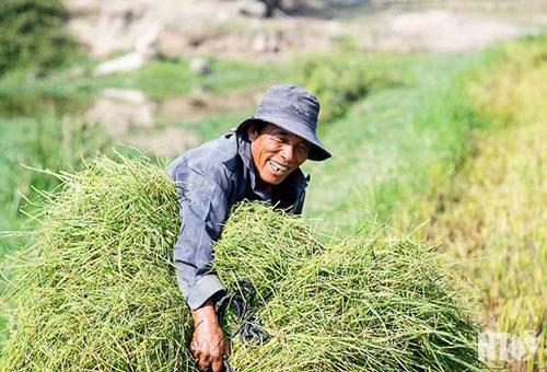 Ninh Thuận trong đợt hạn hán khốc liệt nhất thập kỷ: Những hình ảnh khiến ai cũng xót xa - 4