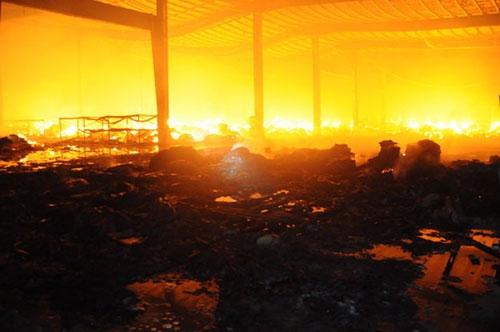 30 ngàn m2 kho giấy trong KCN Nhơn Trạch chìm trong biển lửa - 1