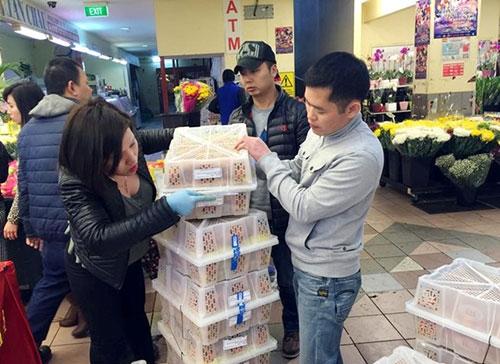 300 kg vải Việt bán lẻ hết sau 1 giờ tại Australia - 8