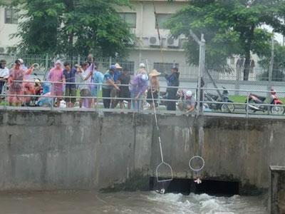 Đổ xô đi bắt cá sau mưa ngập ở Hà Nội