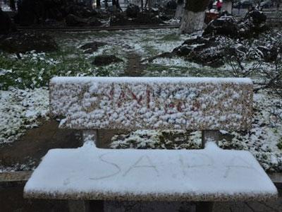 Tuyết rơi dày đặc, Sa Pa lạnh -3 độ C
