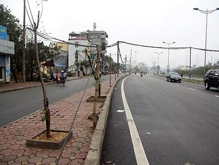Cột điện bằng cọc tre trên đường nghìn tỷ ở Hà Nội - 1