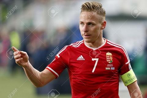 Duong toi Euro 2016 cua Hungary Su tro lai cua mot the luc hinh anh 4