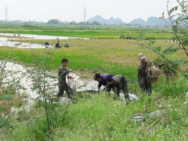 Hình ảnh đẹp: Khi những người chiến sĩ lội bùn, xuống đồng gặt lúa giúp dân - Ảnh 6.