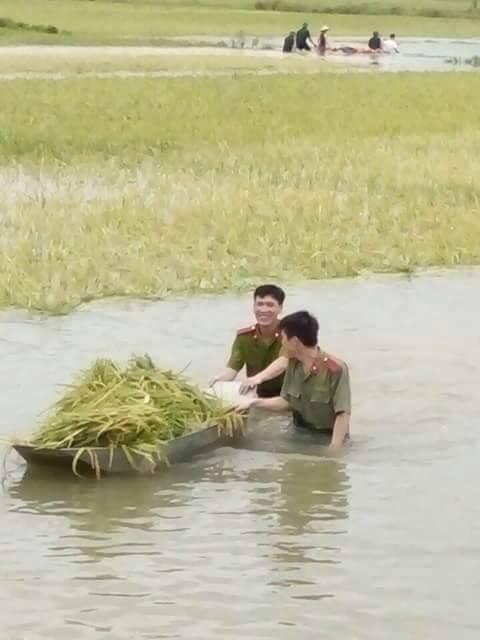 Hình ảnh đẹp: Khi những người chiến sĩ lội bùn, xuống đồng gặt lúa giúp dân - Ảnh 8.