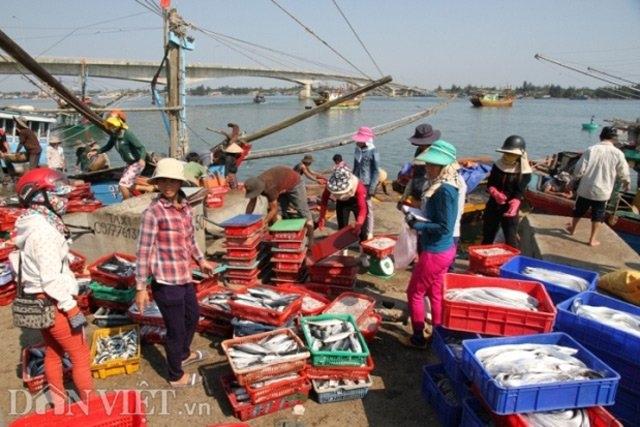 quang tri: 3/7 mau hai san co ham luong asen vuot muc cho phep hinh anh 1