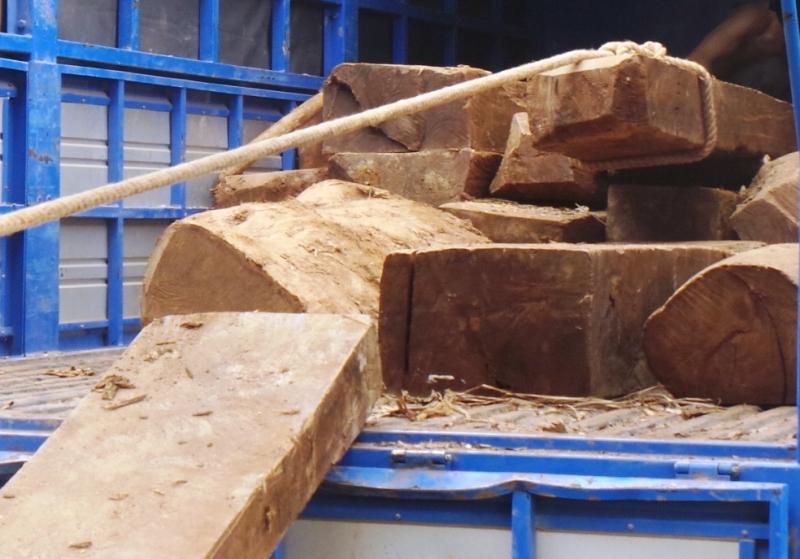 Xe tải chở gỗ qua mặt nhiều trạm kiểm tra lâm sản