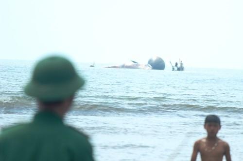 Cá voi chết ở Nghệ An: Ngư dân không ra biển, ở nhà làm lễ tang cá - Ảnh 1
