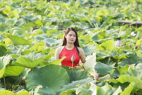 Thiếu nữ Hà Nội khoe nét gợi cảm bên sen đầu hạ - 12