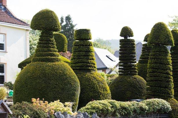"""Biệt thự có hàng rào cây hình """"của quý"""" khổng lồ ở Anh - 2"""