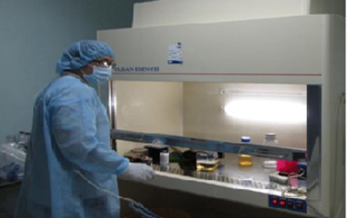 bí mật, xét nghiệm ADN, huyết thống