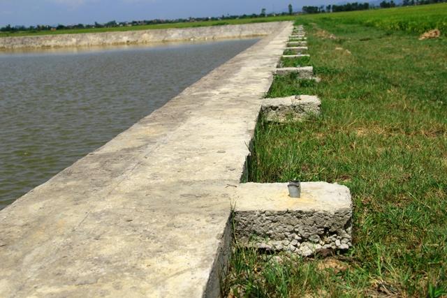Hồ nước sâu, nằm ngay bên cạnh sân vận động nhưng không hề có hàng rào bảo vệ. Ảnh: Phan Ngọc