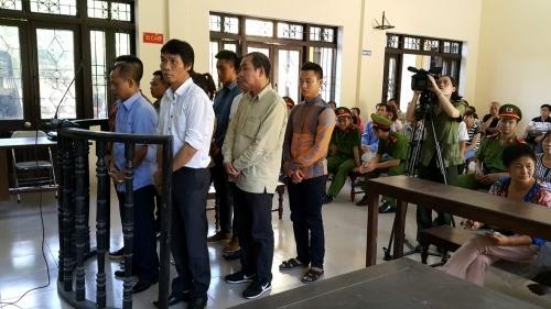 Ông trùm Minh 'sâm' bị VKS đề nghị mức án từ 20 - 30 tháng tù - Ảnh 2