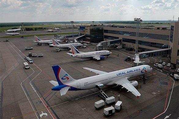 Sân bay quốc tế Domodedovo ở Moscow. (Ảnh: Pravda)