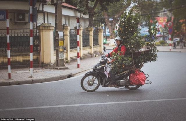 Những chuyến xe chở hàng cồng kềnh trên mọi góc phố Hà Nội đã trở nên quen thuộc