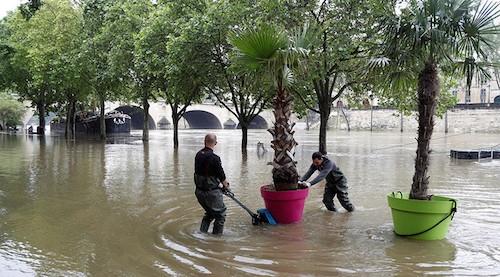 Ảnh: Thuyền bơi, vịt lội trên phố Paris - 8