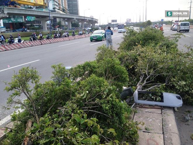 Xe container cày nát hàng loạt cây xanh rồi rời hiện trường - Ảnh 2.