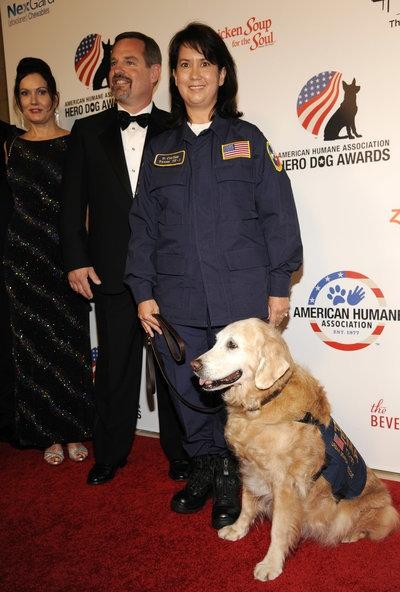 Bretagne tại lễ trao giải Chú chó anh hùng của Hiệp hội Nhân đạo Mỹ năm 2014. Ảnh: AP