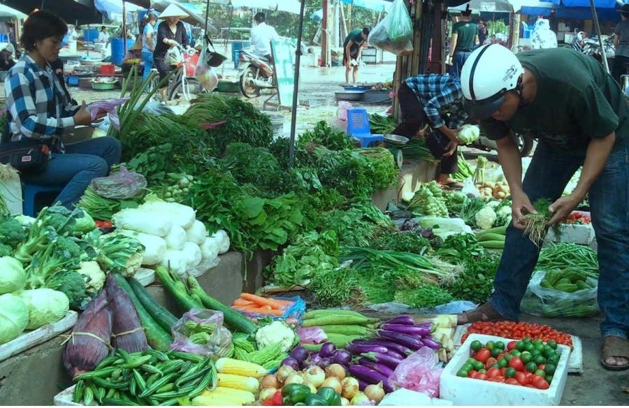 Hơn 5% lượng rau bán trên thị trường nhiễm chất cấm - 1