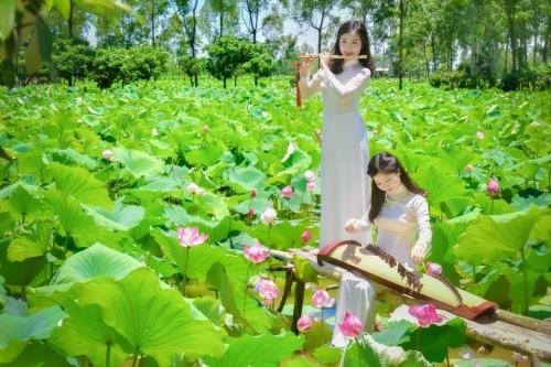 Thiếu nữ xinh đẹp bên cánh đồng hoa sen khiến triệu người mê đắm - Ảnh 3