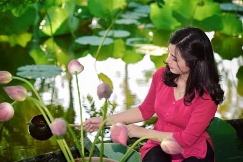 Thiếu nữ xinh đẹp bên cánh đồng hoa sen khiến triệu người mê đắm - Ảnh 6