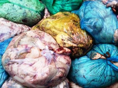 Phát hiện 13 tấn thịt mỡ động vật hôi thối