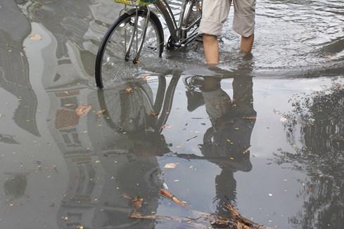 Nhiều người già phải đẩy bộ xe đạp của mình, hoàn toàn không thể chạy nổi