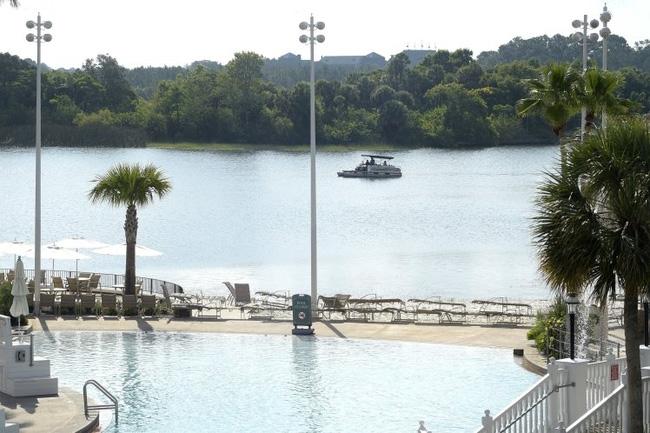 Lại thêm 4 con cá sấu bị bắn chết trong quá trình tìm kiếm cậu bé rơi xuống hồ gần Disney World - Ảnh 2.