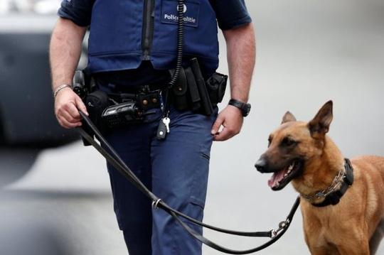 Bĩ cũng tăng cường an ninh vì Euro 2016 đang diễn ra ở Pháp. Ảnh: Reuters