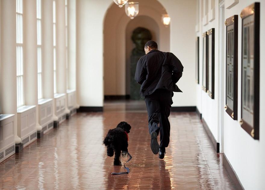 Nhiep anh gia Nha Trang: 8 nam va 2 trieu buc hinh Obama hinh anh 8