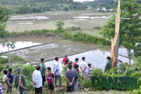Hàng trăm người dân kéo đến vườn nhà anh Hùng để xem cây cổ thụ bị sét đánh.