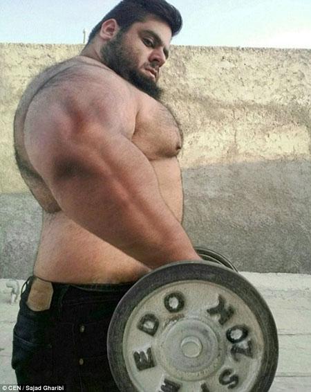 Gharibi từng tham gia nhiều cuộc thi ở bộ môn đẩy tạ. Anh cũng là gương mặt đại diện của Iran trong nhiều cuộc thi thể hình khác.