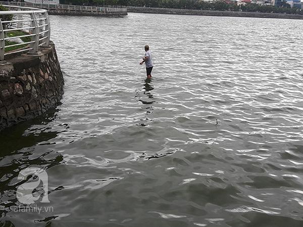 cá chết