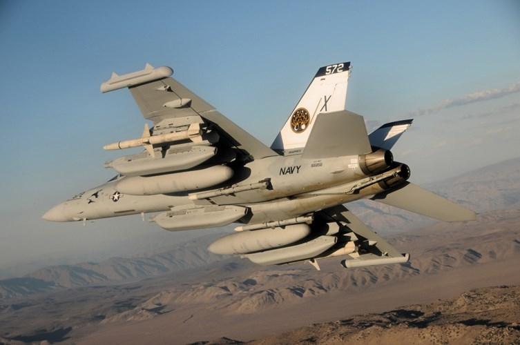 Ly do Viet Nam nen chon F/A-18E/F thay vi mua them Su-30-Hinh-8