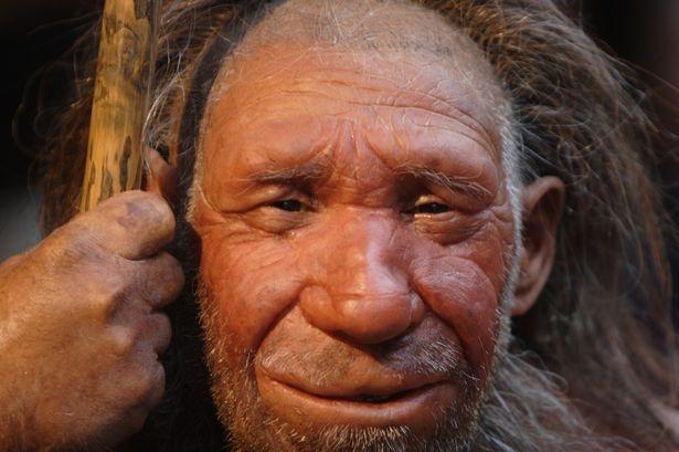 Bỉ: Phát hiện tộc người ăn thịt lẫn nhau 40.000 năm trước - 2