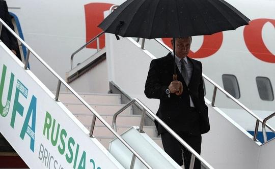 Tổng thống Nga Vladimir Putin đột nhiên hủy hàng loạt cuộc họp lẫn chuyến đi. Ảnh: Kremlin Press Service