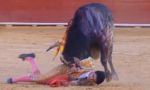 Khoảnh khắcVictor Barrio bị bò tót húc trong cuộc đấu. Ảnh chụp màn hình