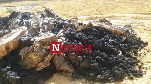 Bộ trưởng, Chủ tịch tỉnh: Kiểm tra gấp việc nhà thầu của Formosa chôn chất thải - Ảnh 3.
