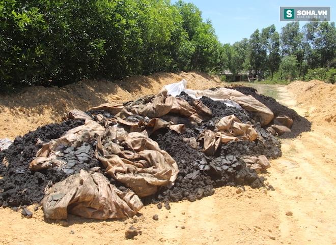 GĐ công ty môi trường xin 100 tấn chất thải Formosa để... bón cho cây - Ảnh 1.