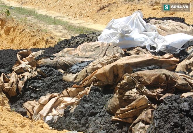 GĐ công ty môi trường xin 100 tấn chất thải Formosa để... bón cho cây - Ảnh 4.