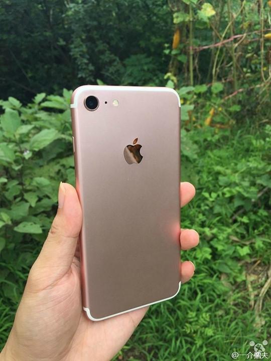 Nhiều người quyết mua iPhone 7 chỉ vì tin và thích - ảnh 1