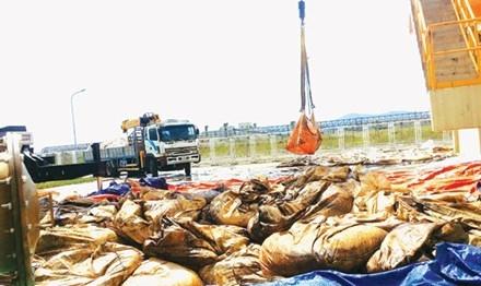 Số chất thải nguy hại mà Phú Hà đưa về là thùng phuy, bóng đèn huỳnh quang thải và giẻ lau dính dầu thải...